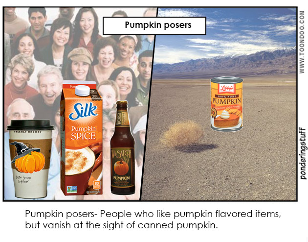 Pumpkin flavored items